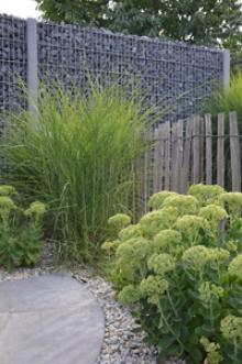Een steenscherm is enigszins vergelijkbaar met een steenkorf. Beide vormen een moderne oplossing voor een tuinscherm, maar hun opstelling is verschillend.