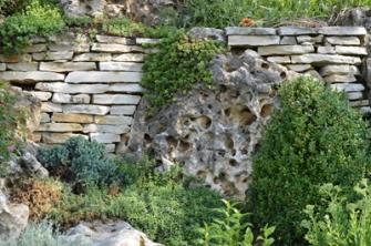 Een onderhoudsvrije tuin bestaat niet, maar om het onderhoud draaglijk te houden is het belangrijk dat een tuin regelmatig verzorgd wordt.